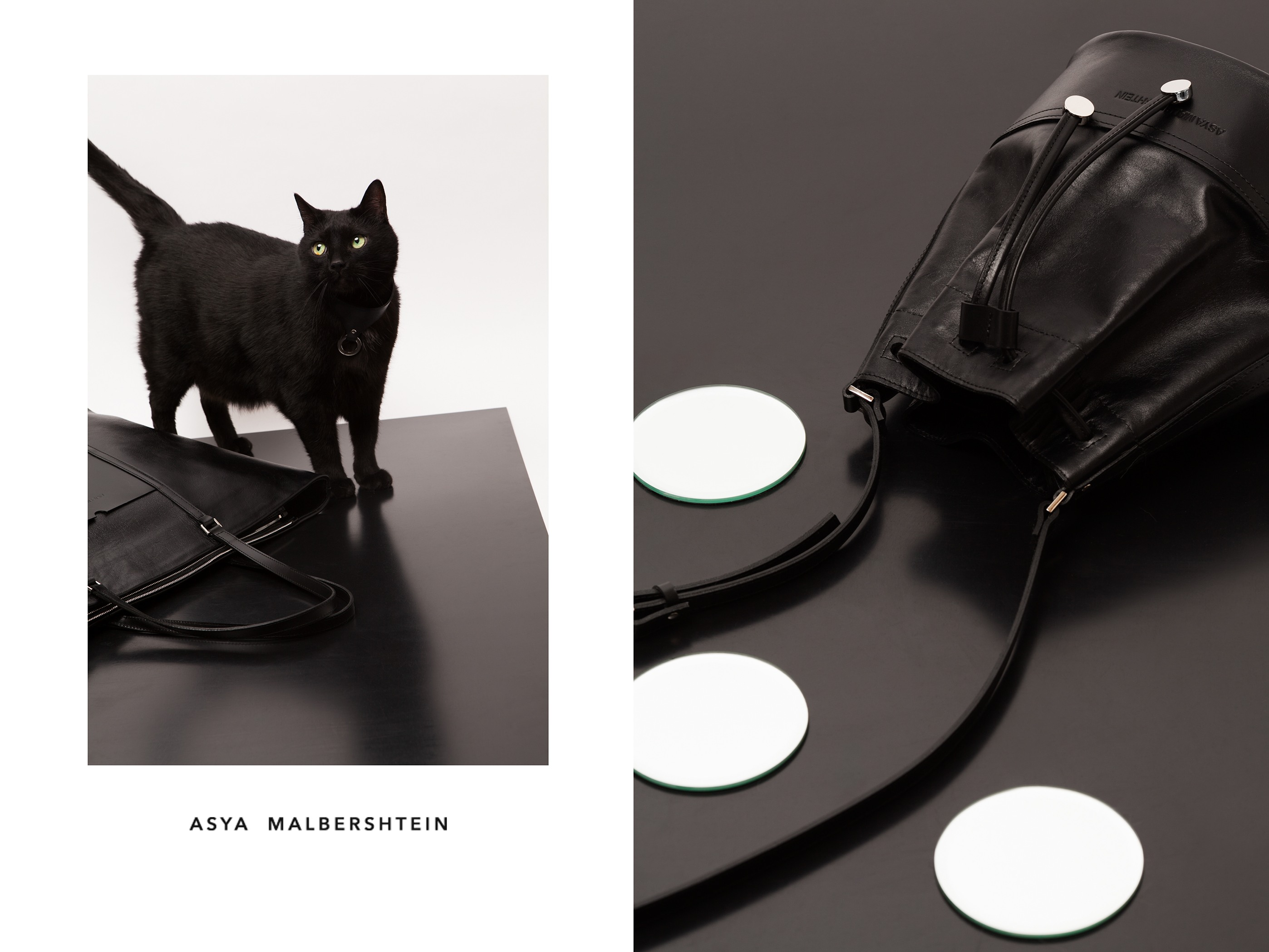 Asya Malbershtein WOMEN ACCESSORIES SUMMER 2013 - Cats